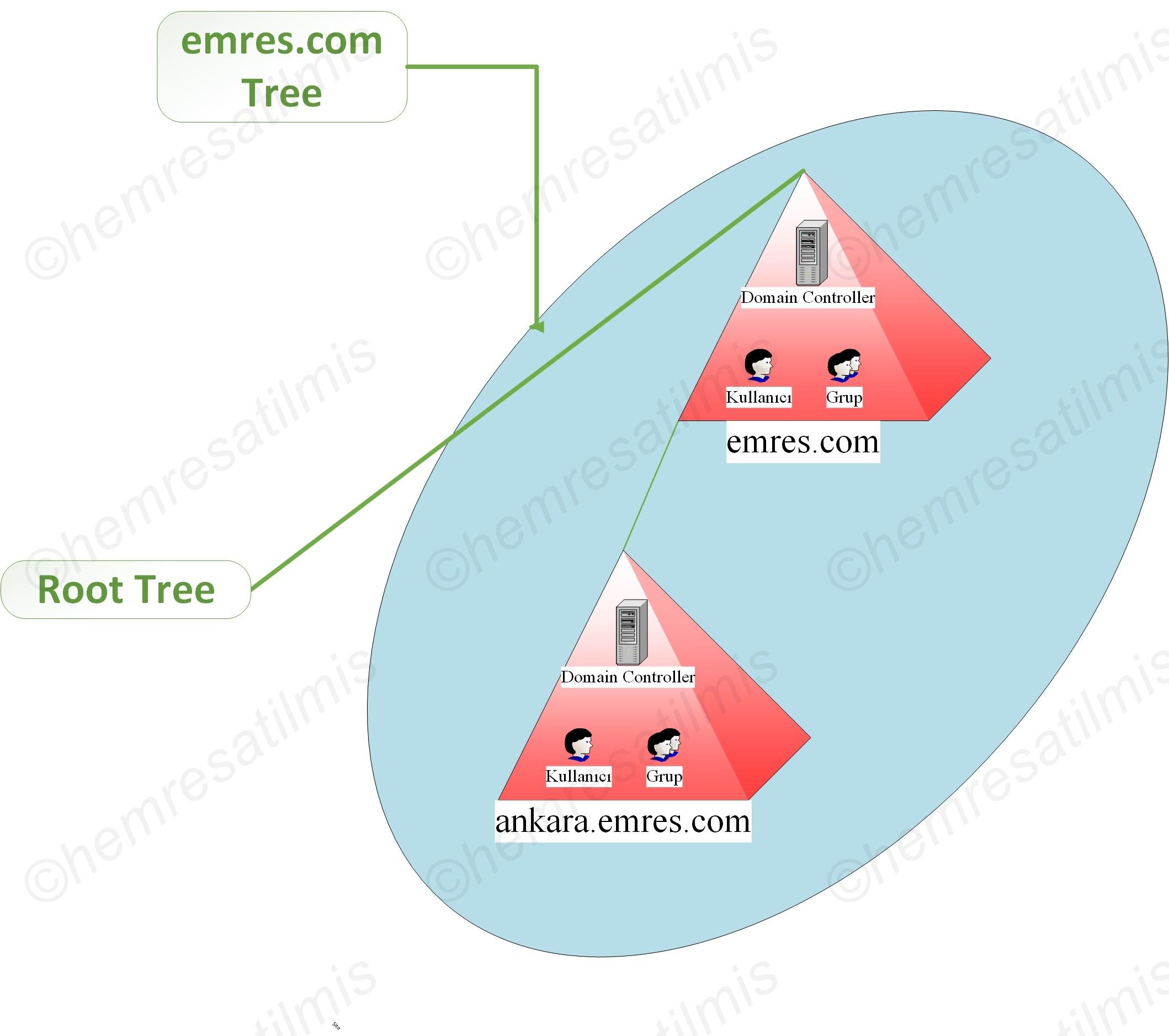 Active Directoryde Forest ve Tree - 02